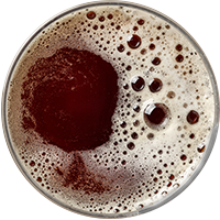 https://www.romabeercompany.it/wp-content/uploads/2017/05/beer_transparent_02.png